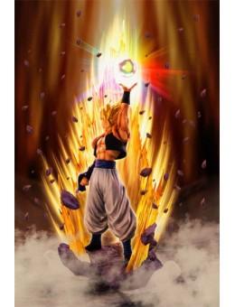 Dragon Ball Z Fusion Reborn...